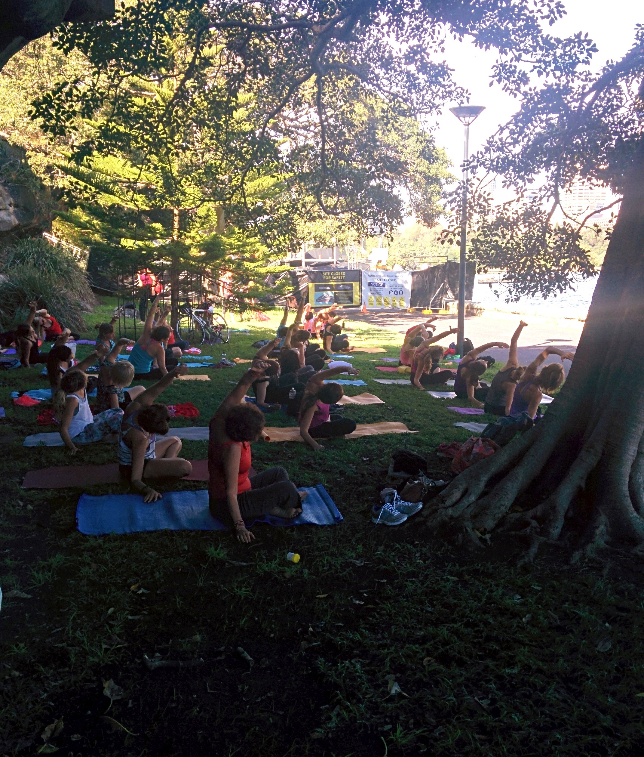 Yoga in front of the Sydney Harbour at the Botanic Garden made my day. #100happydays